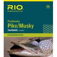 Leader Rio Pike Musky